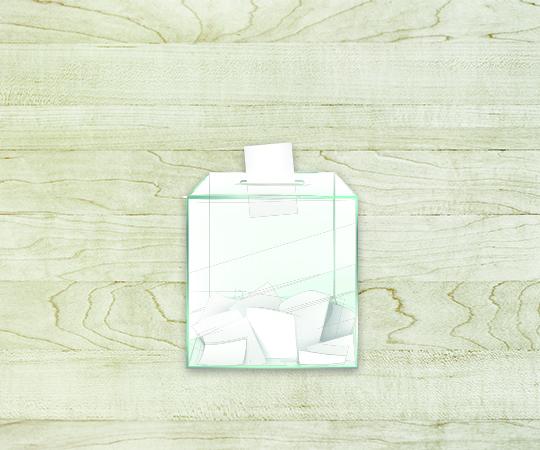 élection bulletin profession de foi propagande vote imprimerie tour dauphinoise papier 80 grammes blanc avec logo caméléon2